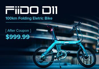 FIIDO D11